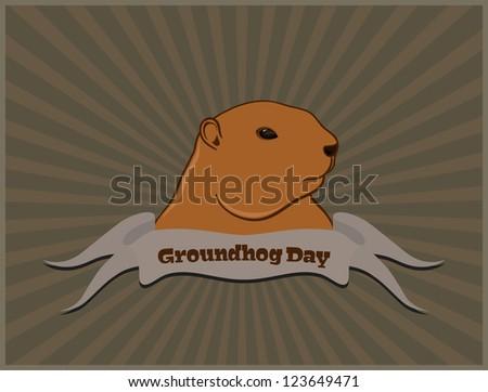 Marmot postcard, isolated on white background - stock photo