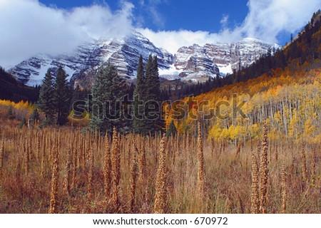 Maroon Bells, tall weeds, Aspen, Colorado - stock photo
