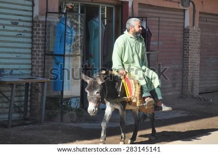 MARRAKESH, MOROCCO - Dec 28: Donkey - a typical transport in Morocco on December 28, 2009 in Marrakesh, Marocco. - stock photo