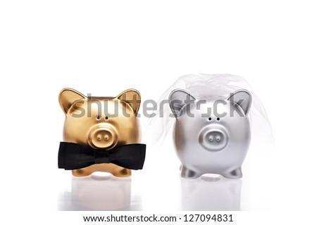 Marriage concept under the use of two cute pigs - stock photo