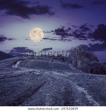 marsala toned composite autumn landscape. path through the meadow on mountain top at night in full moon light - stock photo
