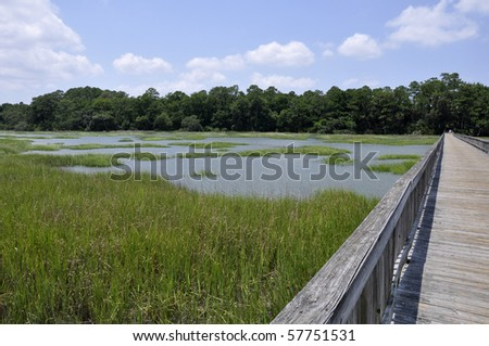 Marsh and a wooden dock by Broad Creek on Hilton Head Island in South Carolina. - stock photo