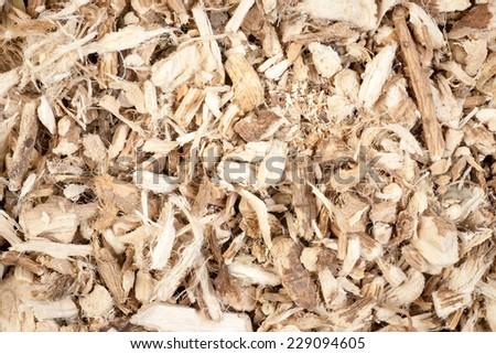 Marsh mallow - stock photo