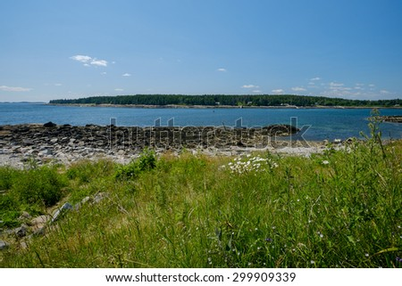 Marshall Point harbor entrance at low tide with beautiful wild flowers along the banks - stock photo