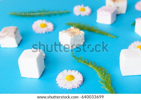 Marshmallow  on a blue background