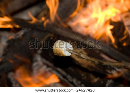 Marshmallow on a stick being roasted over a camp fire.