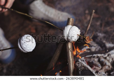 Marshmallow on a stick roasted over a camping fire - stock photo