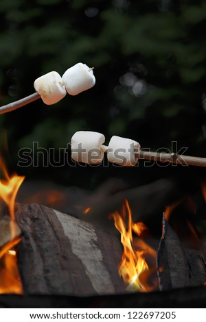 Marshmallows being roasted over a camp fire in the evening. - stock photo