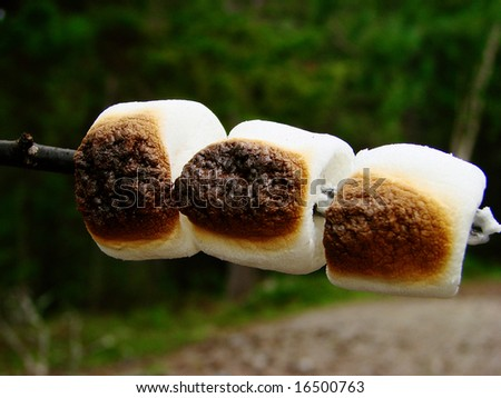 marshmallows roasted campfire wallpaper background - stock photo