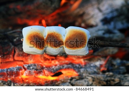 marshmallows roasting on a open fire - stock photo