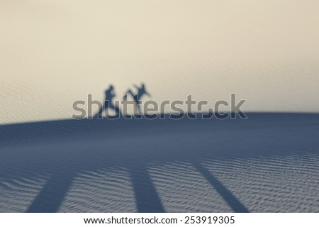 Martial artists silhouettes and shadows against sand dunes while training in self defense - stock photo