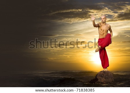 Martial Arts - stock photo