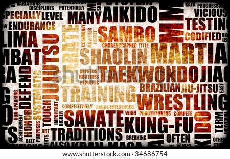 Martial Arts Different Forms of Fighting - stock photo