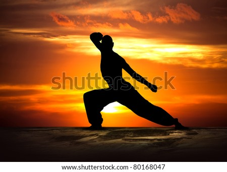 Martial Arts Fitness at Sunset - stock photo