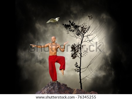 Martial Arts  Kung Fu Background - stock photo