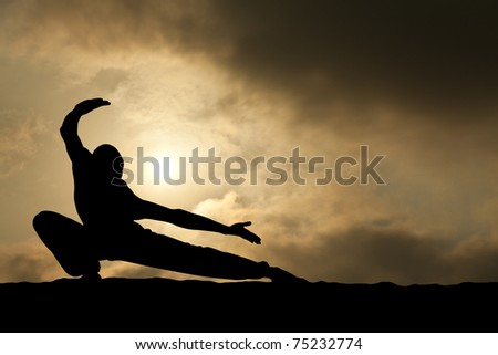 Martial Arts Man Silhouette on Dramatic Sky Background - stock photo