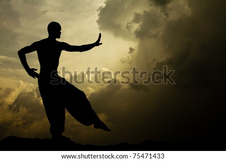 Martial Arts Meditation Background - stock photo