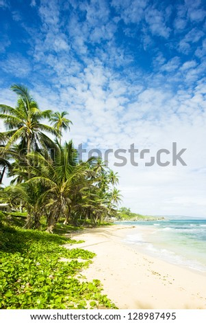Martin's Bay, Barbados, Caribbean - stock photo