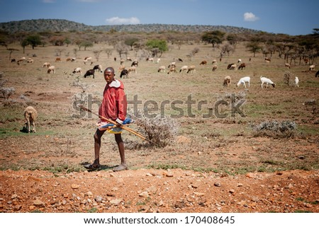 MASAI MARA - OCTOBER 02 : Young male with goats in masai village on October 02 , 2013 in Masai Mara,Kenya
