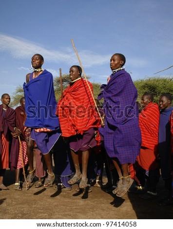 MASAI MARA,TANZANIA, - MARCH 5: Masai warriors dancing traditional jumps as cultural ceremony, review of daily life of local people. Masai Mara National Park Reserve, March 05, 2009, in Masai Mara - stock photo