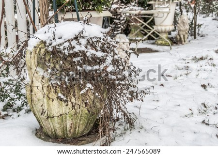 Mass production concrete planter with faded plant covered with snow in a garden  Closeup Garden view in winter covered with snow for book cover, brochure, flyer, magazine, CD cover design, website - stock photo