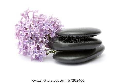 massage stones and lilac flowers - stock photo