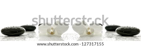 Massage stones and orchid flower with water drops representing a spa concept. - stock photo