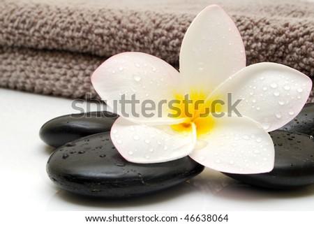 massage towel with frangipani flower - stock photo