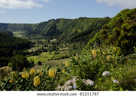 Massive and lush volcano crater with fields in the background and torch lilies and hydrangea in the foreground, Sao Miguel, Azores.
