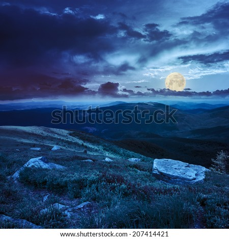 Massive boulders among wild plants on the hillside in high mountains at night in full moon light - stock photo