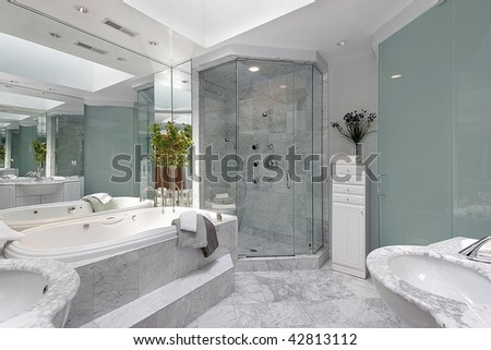 Master bath with step up tub - stock photo
