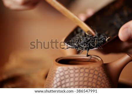 Master prepares Chinese tea leaves for home ceremony closeup concept image - stock photo