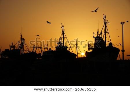 Masts and Seagulls - stock photo