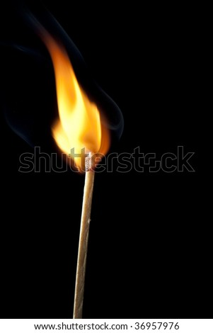 Match Stick with Wild Flame