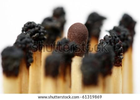 Match sticks - stock photo
