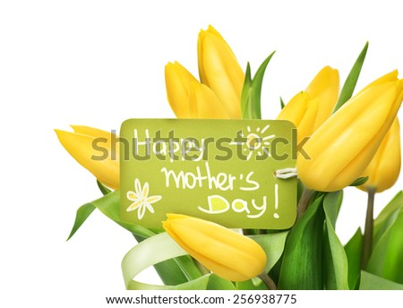 Mather's Day holiday spring yellow tulips flower bunch with greeting card. Beautiful tulip flowers bouquet isolated on white background. Springtime - stock photo