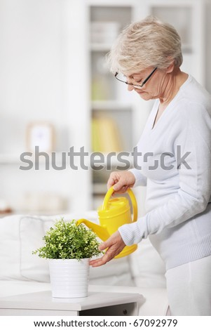 Mature attractive woman watering flowers at home - stock photo