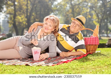 Mature couple enjoying a picnic in the park on a sunny day - stock photo