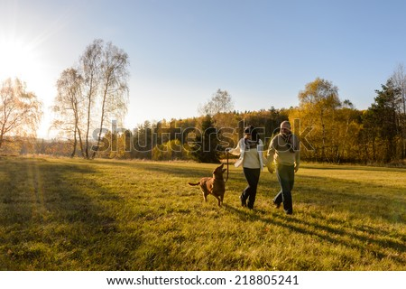 Mature couple holding hands walk retriever dog autumn sunset countryside meadow - stock photo
