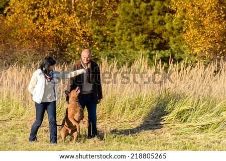 Mature couple playing with retriever dog sunny autumn countryside - stock photo