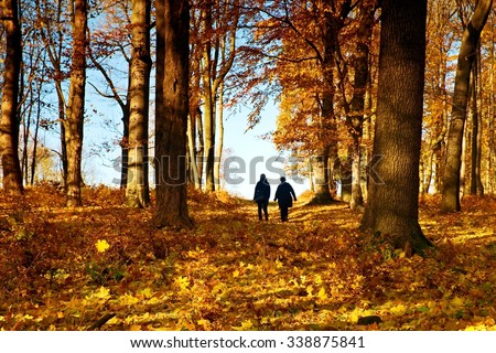 Mature couple walking in colorful autumn park