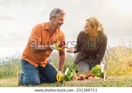 Mature Couple With Crate Of Harvested Vegetables In The Garden - stock photo