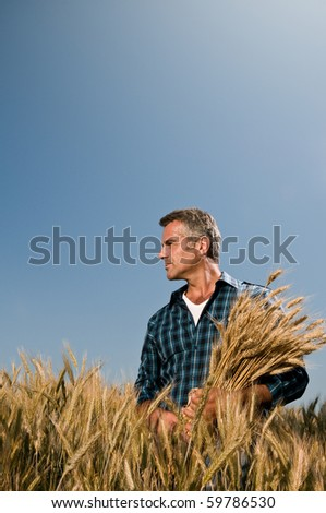 Mature farmer looking with satisfaction at his cultivated field with a bunch of ripe wheat after a working day - stock photo
