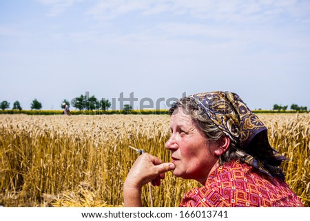 Mature farmer woman  looking and worries about her crop. - stock photo