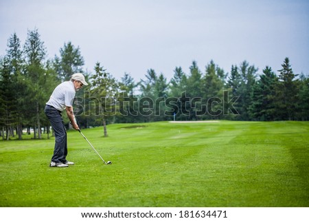 Mature Golfer on a Golf Course (ready to swing)