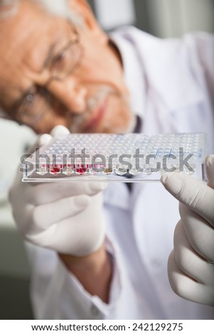 Mature male researcher examining microtiter plate in laboratory - stock photo