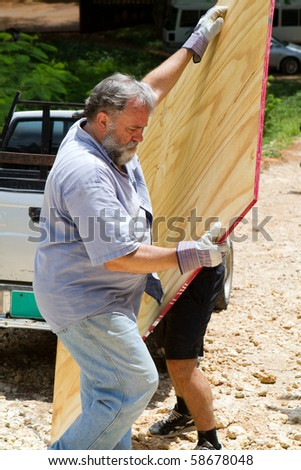 Mature man wearing work gloves unloads a sheet of plywood from a pickup truck. - stock photo
