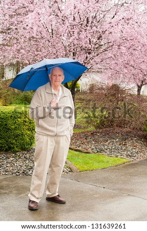 Mature man with umbrella in rain with blooming cherry tree in background. Vertical. - stock photo