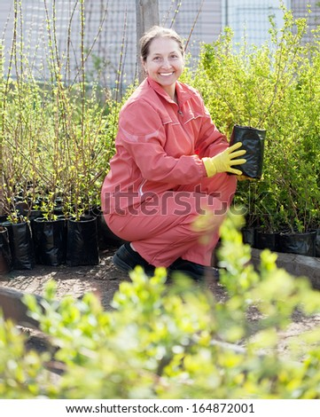 Mature woman at a nursery. - stock photo