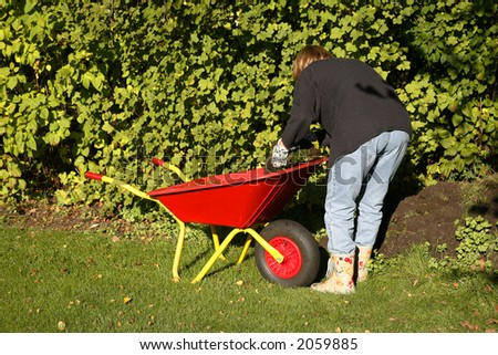 Mature woman at autumn gardening working in the low sunlight.
